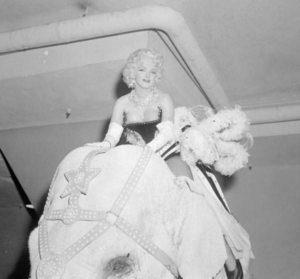 Marilyn Monroe (35) (600x558, 32Kb)