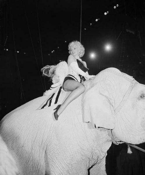 Marilyn Monroe (91) (498x600, 28Kb)