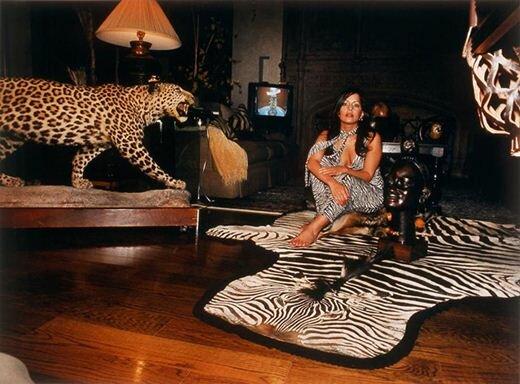Кто живет в богатых мексиканских домах. Фотографии