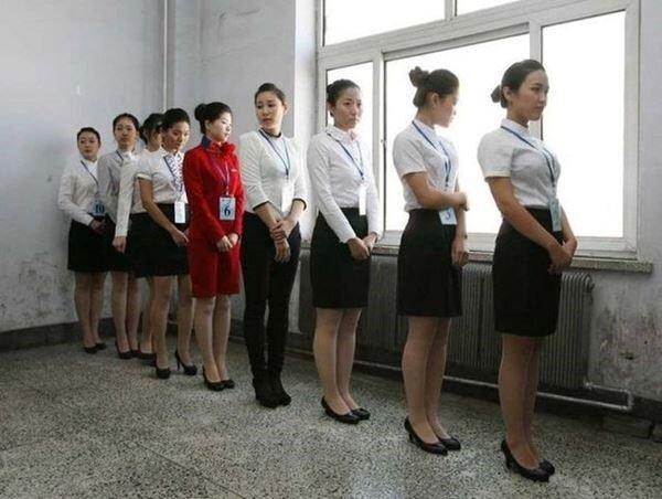 stewardess15